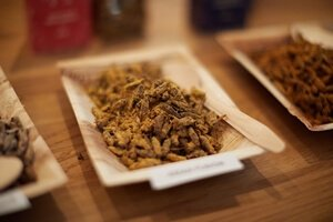 Portions-01-02-Party-Bugs-roasted-crickets-(300x200;72pt)_M_T